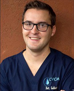 Dott-Matteo-Gobbetti-Corso ECM Missione-Veterinario di Medical Evidence