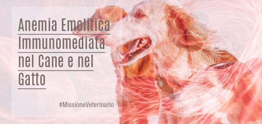Anemia Emolitica Immunomediata nel Cane e nel Gatto: Quali Terapie?