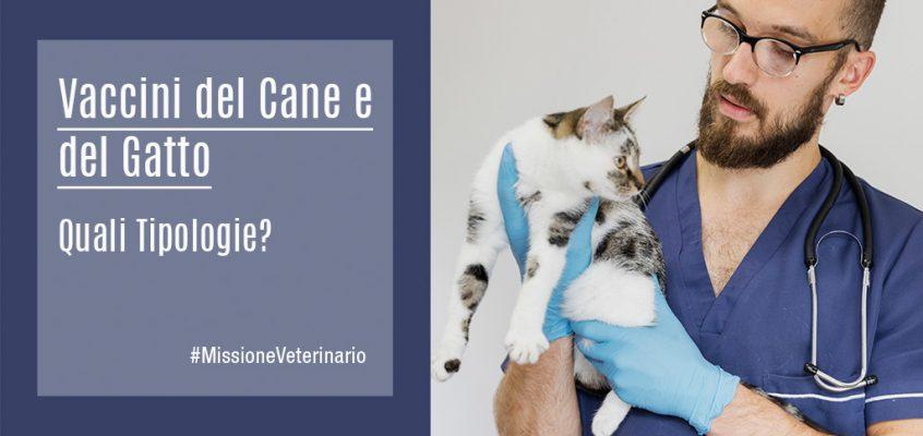 Vaccini del Cane e del Gatto, quali Tipologie?