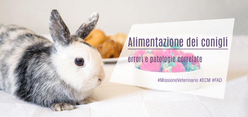 Alimentazione dei conigli: errori e patologie correlate