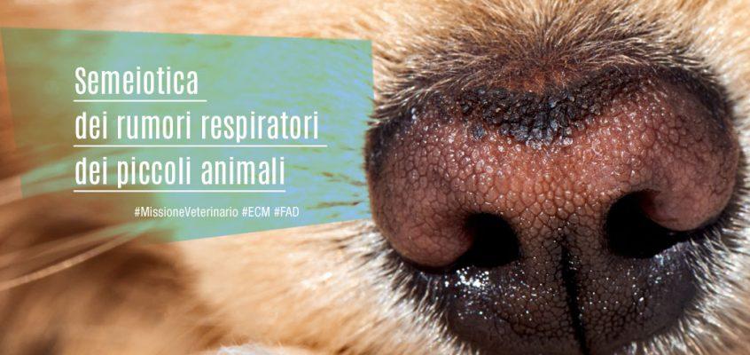 Semeiotica dei rumori respiratori dei piccoli animali